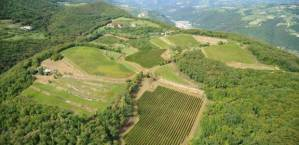 Aerial View of Brigaldara