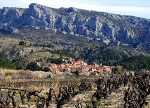 View from one of many old vine sites sourced by Hervé Bizeul