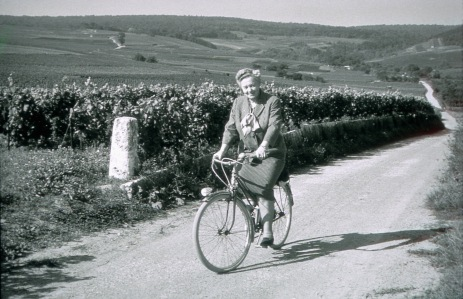 Lily in Her Vineyards in the 1940s, Protecting, Promoting, Perfecting.
